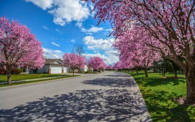 ¿Puede ser el entorno un factor de decisión de compra inmobiliaria?